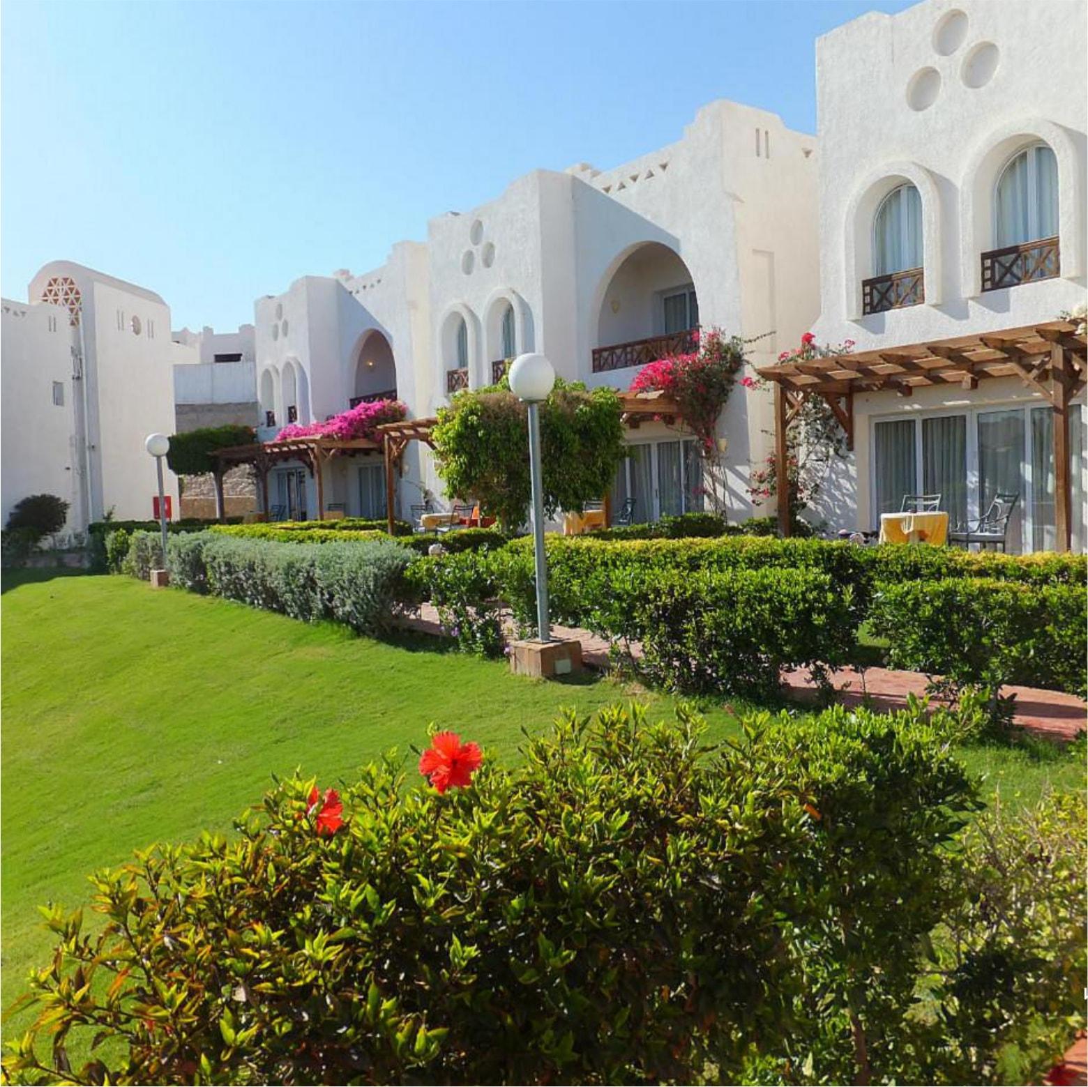 Hilton Sharm Dreams Resort лужайка